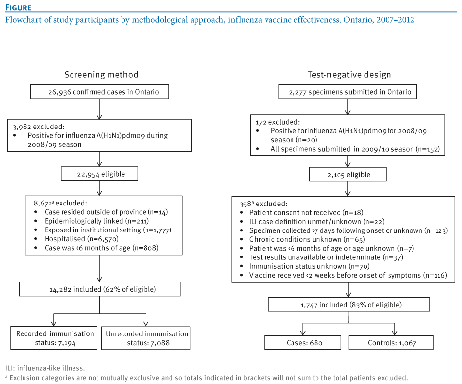 Influenza vaccine essay